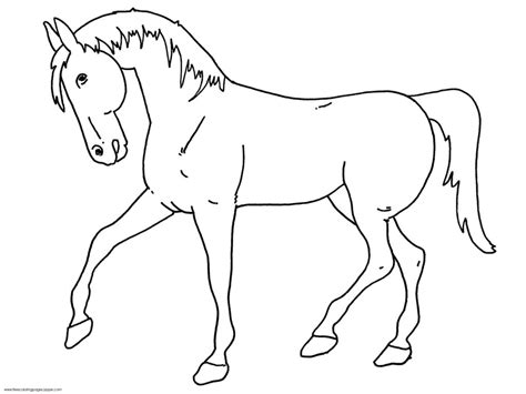 printable horse images coloring pages free printable horse outline to color