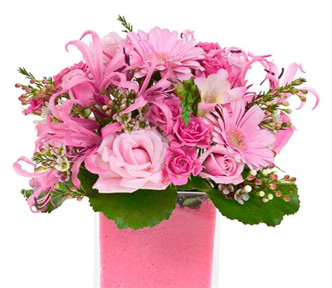what of flowers for valentines day flowers for valentine s day all about flowers our