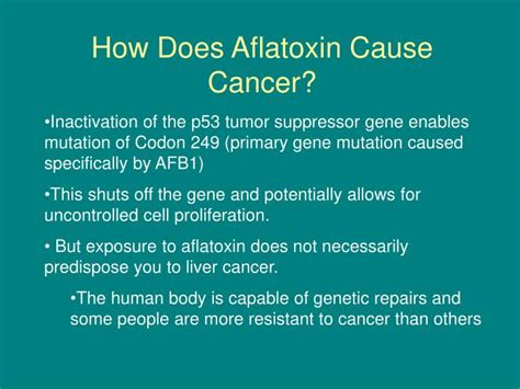 How To Detox Aflotoxins by Ppt Aflatoxin B1 Powerpoint Presentation Id 3851757