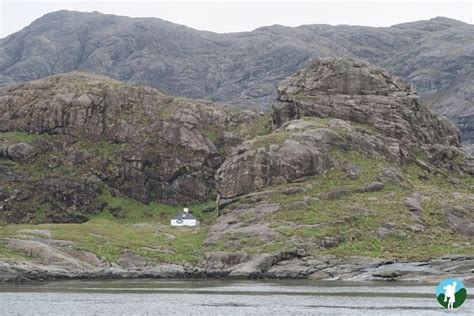 isle of skye boat tours skye wildlife boat tours loch coruisk and the small isles