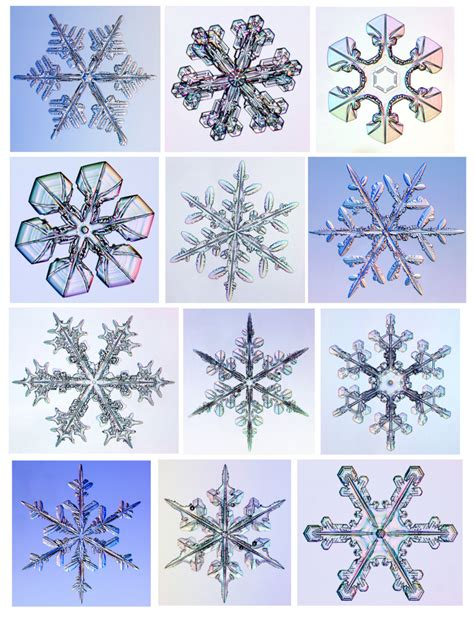For Paper Snowflakes - snowflake activities for