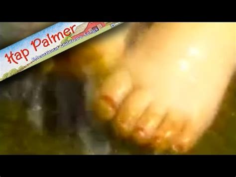 piggy toes hap palmer baby songs youtube