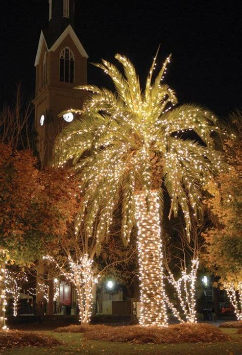 Charleston Festival Of Lights by 1000 Ideas About Charleston Sc On Charleston