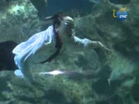 imagenes reales sobre sirenas aquabatix presenta una historia de amor entre sirenas