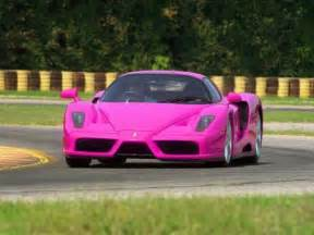 A Pink Lamborghini Pink Lamborghini Christena Schmidt