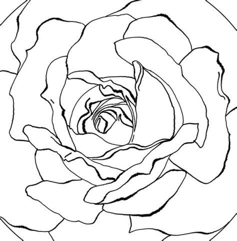 mandala coloring pages roses free printable mandala coloring pages pics