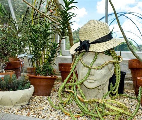 botanical gardens la new orleans botanical gardens la anmeldelser