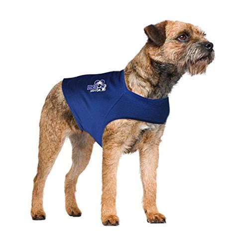 calming vest for dogs 5 best anxiety vests to relieve stress in dogs and keep them calm