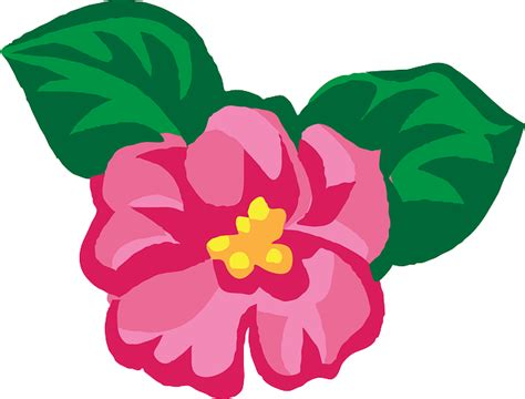 Bunga Violces Pink flower pink 183 free vector graphic on pixabay
