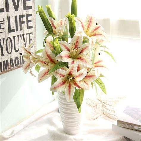 tanaman hias  memperindah kamar kos blog