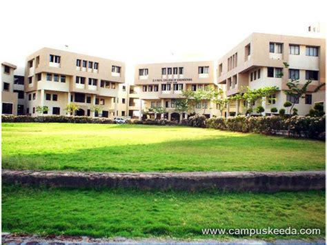 Dy Patil Akurdi Mba Fees by D Y Patil College Of Engineering Akurdi Pune