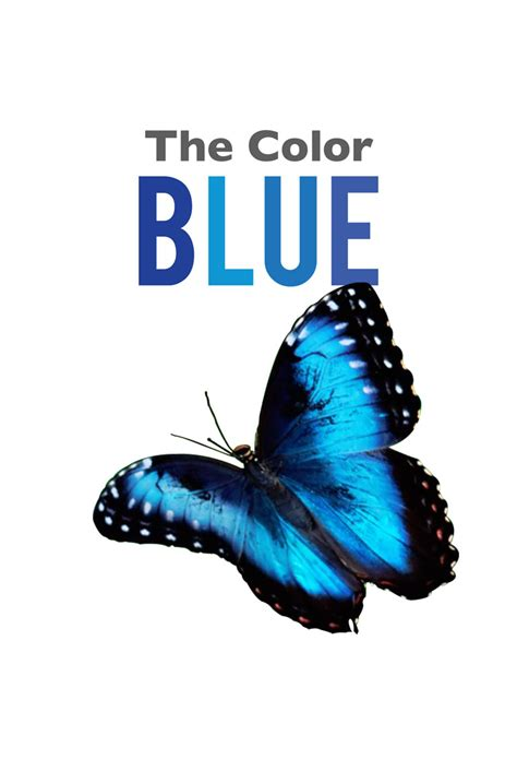 what color is blue books the color blue farfaria
