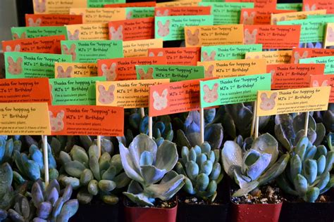 1st Birthday Giveaways - mj s 1st birthday party favors the republic of succulents