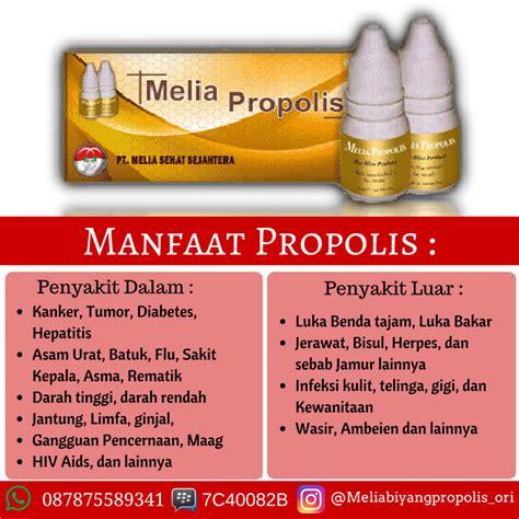 Obat Herbal Katarak Propolis ahli kecantikan dan kesehatan