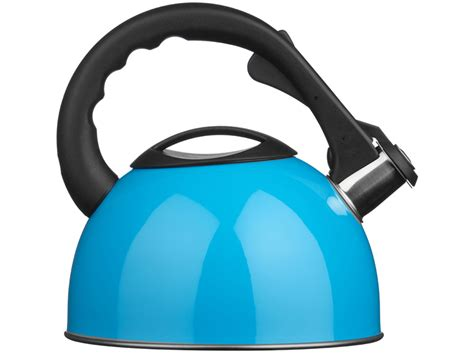 induction kettle or electric kettle 2 5 ltr whistling kettle stainless steel gas electric induction hob home cing