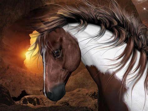 wallpaper horse free download horses wallpapers free wallpaper cave