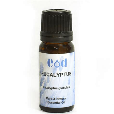 Promo Sensatia Botanicals Eucalyptus Leaf Essential 10ml eucalyptus essential eucalyptus globulus 10ml