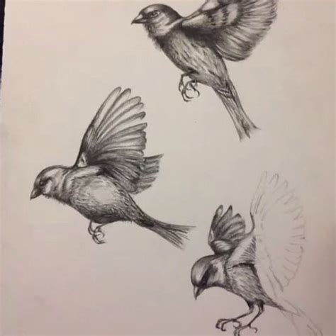 small sparrow tattoo amazing birds in flight drawing birds