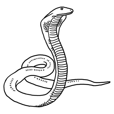 black and white clipart snake black and white clip images download 2018