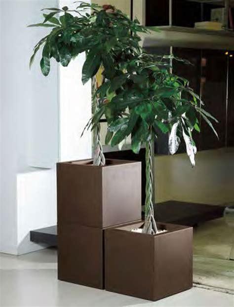 vasi da interni design vasi per interni design vasi per piante da interni prezzi