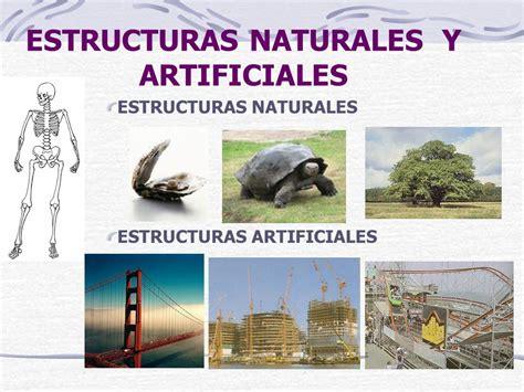 imagenes de estructuras naturales estructuras ppt video online descargar