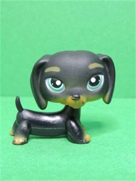 Pet Shop Calendrier De L Avent Calendrier De L Avent Petshop De Hasbro