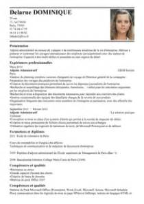 exemple cv voyages cv anonyme