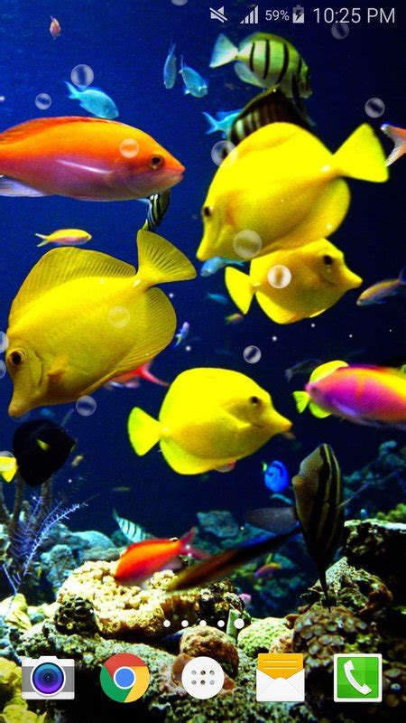 sea live wallpaper apk fish live wallpaper free apk free