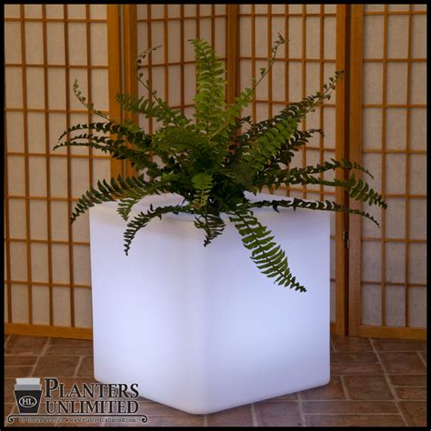Lighted Planters by Square Internally Lit Planters Pre Lit Planters Lit Planter
