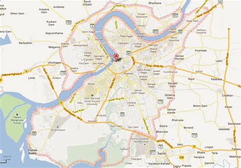 surat city road map pest services in surat insect pest