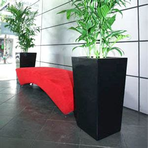 plant packages   office greenscene