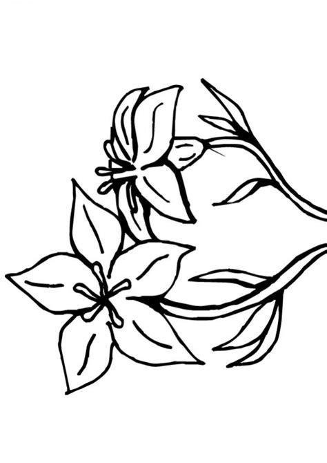 imagenes de rosas faciles dibujos para colorear flor n 176 9 es hellokids com
