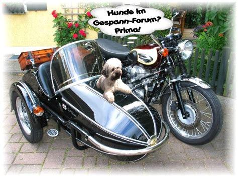 Motorradbrille Hund by Dreiradler Thema Anzeigen Hund Im Boot