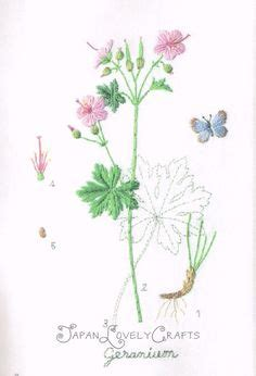 embroidered garden flowers botanical motifs for needle and thread make crafts books kazuko aoki needleworks on craft books