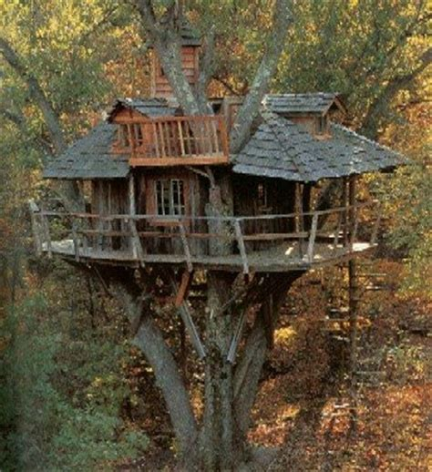 cool tree house home gardening tips amazing treehouses ewoks would be