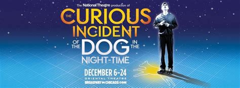 curious incident of the in the nighttime chicago the curious incident of the in the time witty dialog dynamic visuals