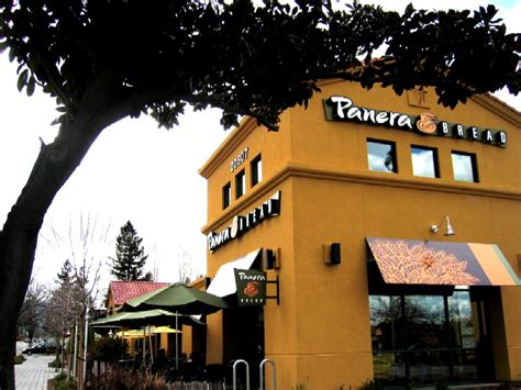 along with the gods amc cupertino there is a god and he put a panera bread in cupertino