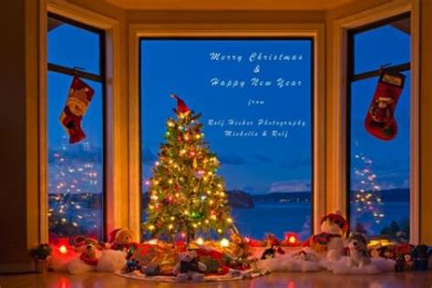 merry christmas  happy  year photo information