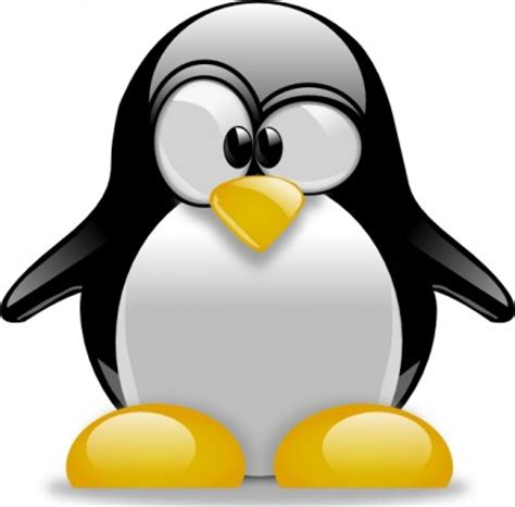 clipart pictures penguin clip black and white clipart panda free