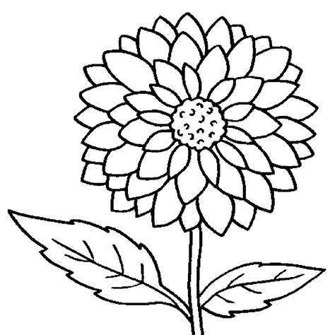 coloring sheet awesome sunflower flower coloring sheet design printable