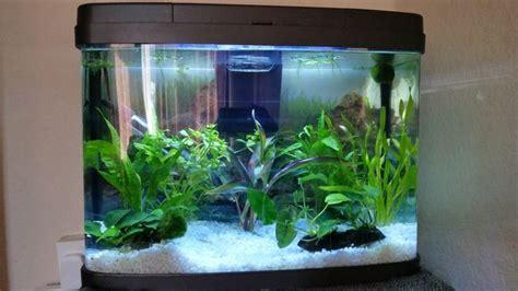 Aquarium Top Filter Filter Akuarium Lengkap 2 easy ways to clean a fish tank wikihow