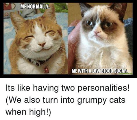 Diabetes Cat Meme - diabetes cat meme www pixshark com images galleries