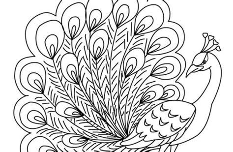dibujo 233 tnico decorativo del pavo real blanco y negro dibujo pavo gallery of pavo real abstracto dibujo para