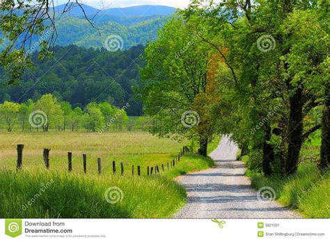 country buffets country road landscape stock image image 5821031