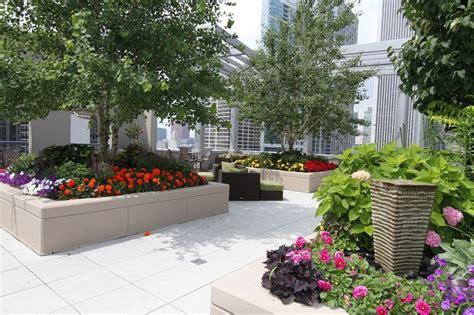 essential rooftop garden design ideas  tips