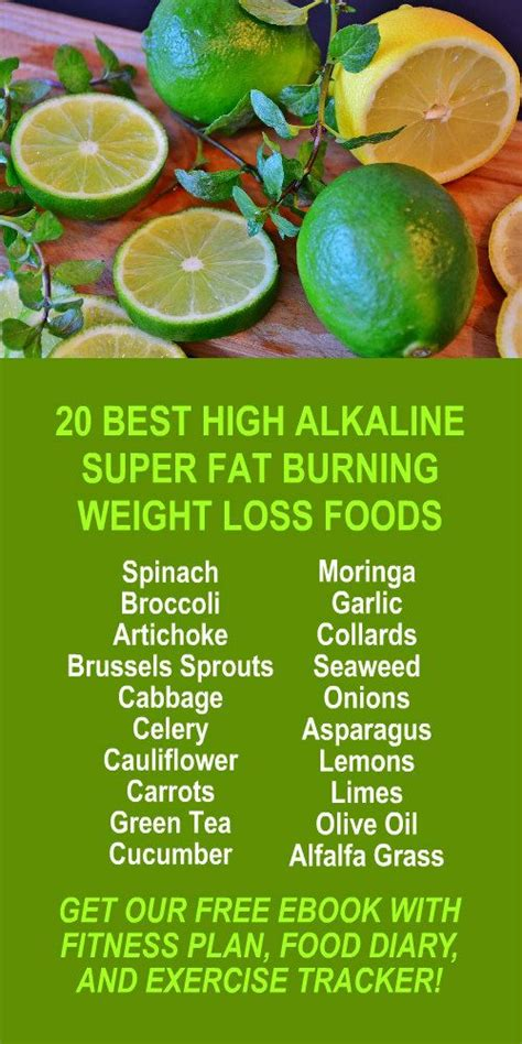 Kangen Water Detox Side Effects by Best 25 Alkaline Fruits Ideas On Benefits Of