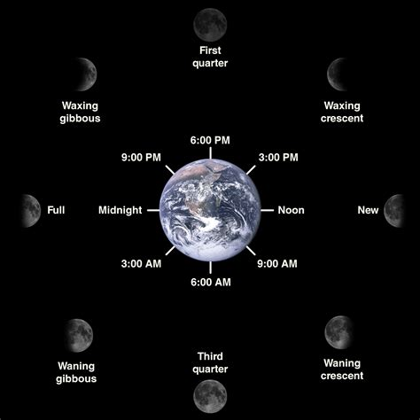 phases of the moon diagram for file lunar phase diagram png