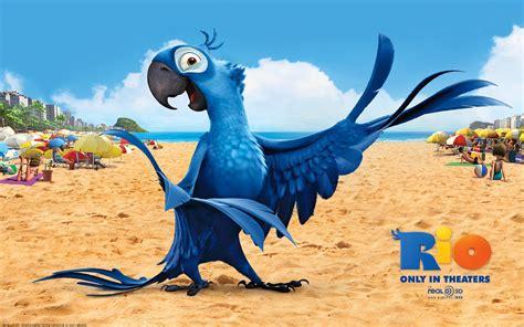 film blue bird pin arara azul on pinterest
