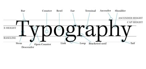 typography vocab type type provides meaningful craft enhancing knowledge on typography and the