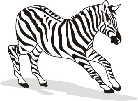 Free Printable Zebra Coloring Pages For Kids Zebra Coloring Pages